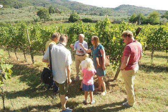 葡萄酒之旅:葡萄園,歷史悠久的酒窖,釀酒廠,品酒