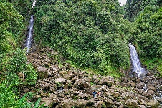 翡翠池和特拉法加瀑布水上冒险