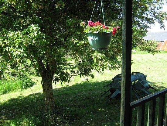 Blaen Cedi Farm: Cabin greenery