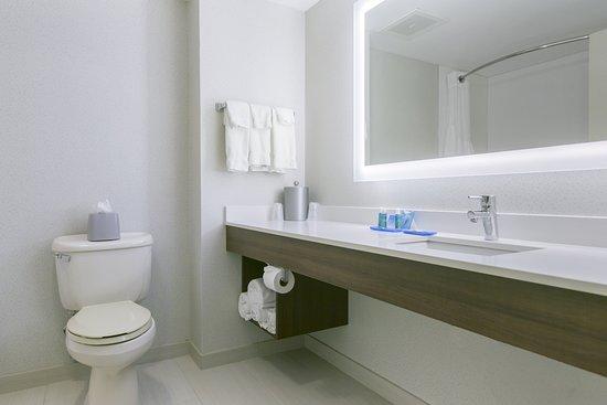 Holiday Inn Express Hotel & Suites Mount Arlington-Rockaway Area