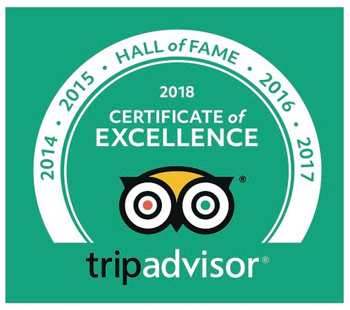 HALL of FAME TripAdvisor Certificate of Excellence