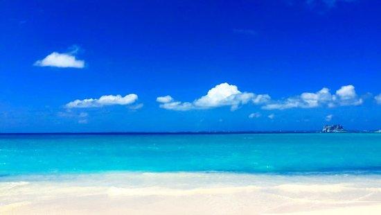 Pool - Picture of Villa Serendipity, St Martin / St Maarten - Tripadvisor