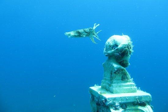 Kerveli Dive Center - Samos