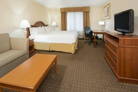 Holiday Inn Express Hotel & Suites Marion: Guest room