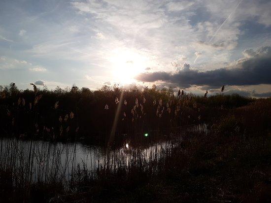 Tuttle Marsh Wildlife Area