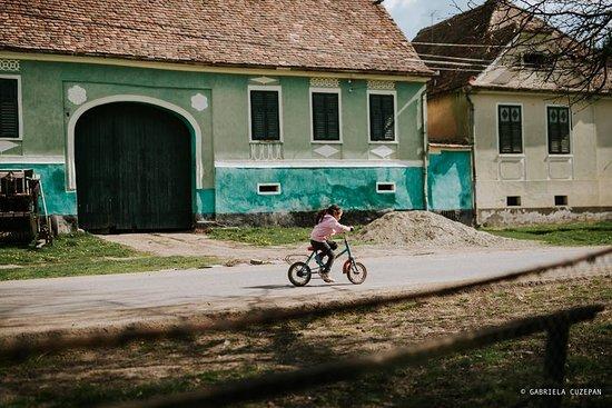 Stejarisu, رومانيا: The village