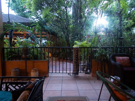 Looking out from the common room area toward the rainforest garden.