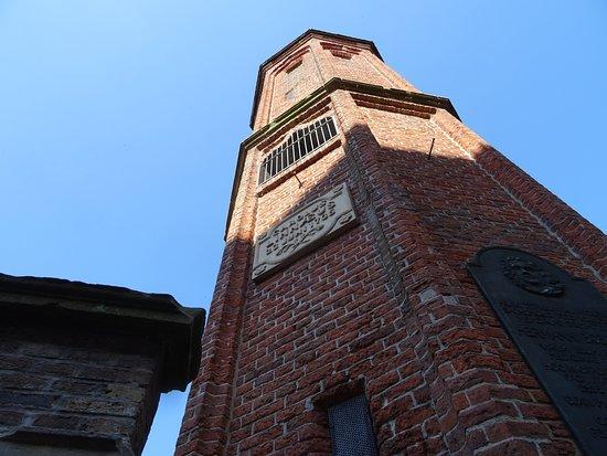 Linnaeustorentje