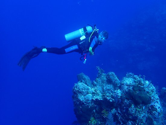 Turks- und Caicosinseln: Diving was easy and awesome!