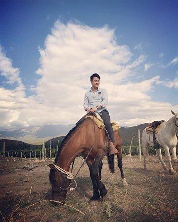 Los Arboles, Argentina: The Rider!!