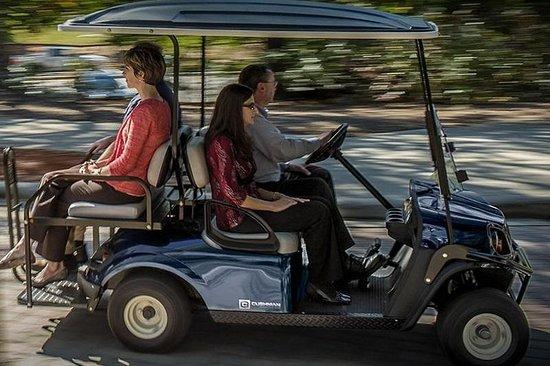 Salado Golf Cart Rentals