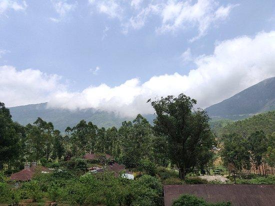 Devikulam ภาพถ่าย