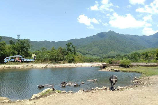 Explore my Vietnam