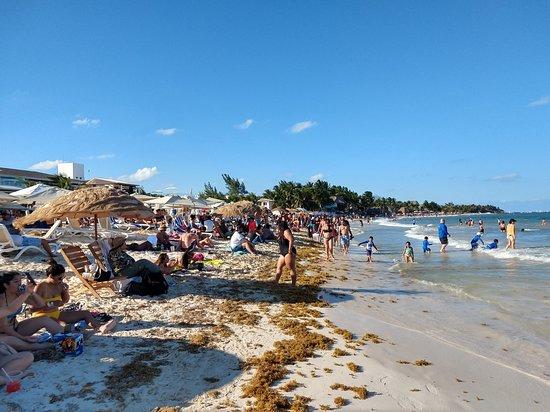 Mamitas Beach : Playa Del Carmen