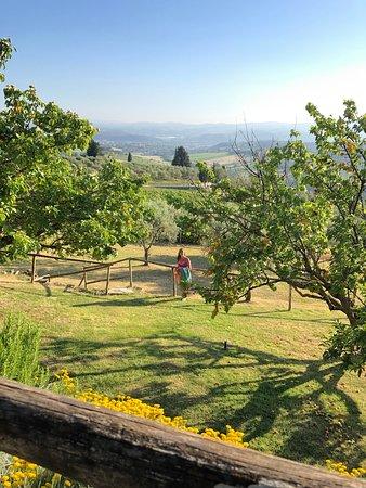 Fattoria di Cinciano: I giardini sono molto curati