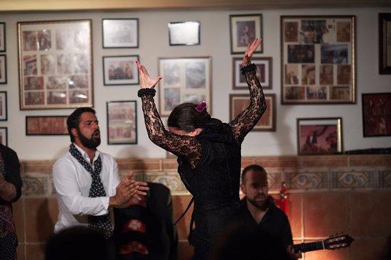 Flamenco Abierto