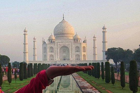 Pacific Tour India