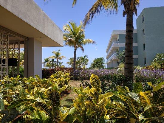 Jardines y Bloques de Habitaciones
