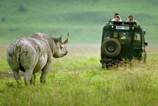 Tanzania Wildcats Safaris: Ngorongoro  crater  Tanzania