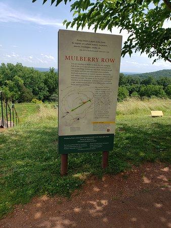 mulberry row