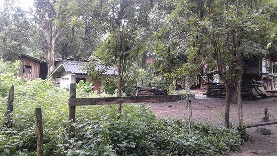 6days/5nights Volunteering Kindred Spirit Elephant Sanctuary Chiang Mai: Beautiful village.