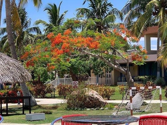 Muthu Playa Varadero Hotel: Muthu Playa Varadero