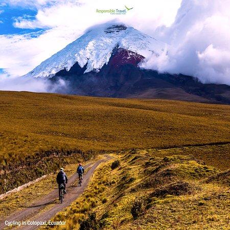 Ecuador Galapagos Travels