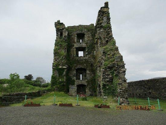 Carriganass Castle: Nearer view
