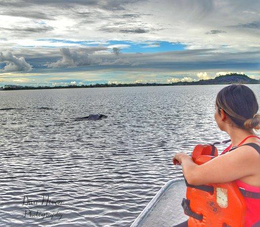 Puerto Carreno, كولومبيا: Nuestros turistas sienten la conexión con la naturaleza, experiencias que siempre quieren repetir 🤸♂️🤸♀️