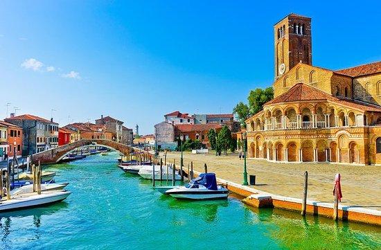 Privattur: Halvdagstur til Murano...