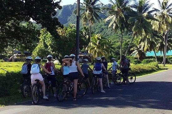 ラロトンガサイクリングツアー「ランチ」