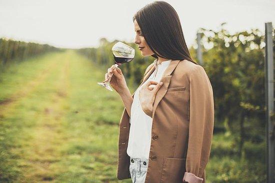 Von Parma: Private Weintour mit...