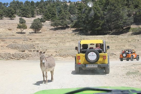 Jeep Safari Aitana from Benidorm
