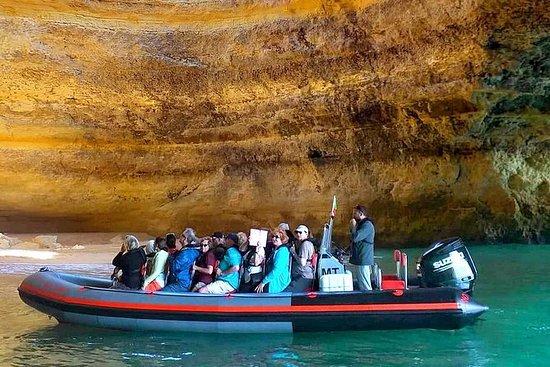 Rib Boat - Delfines & Cuevas