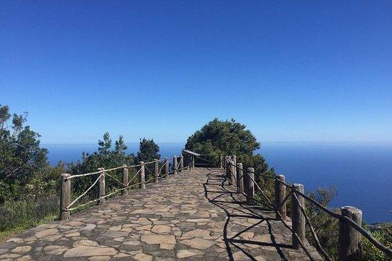 绿色北部 - 通过La Palma的月桂树进行电动自行车