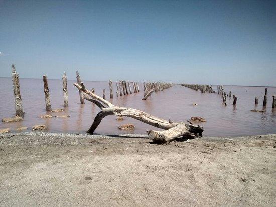 Sasyk-Syvash Lake