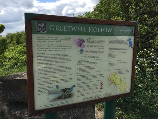 Greetwell Hollow Nature Reserve