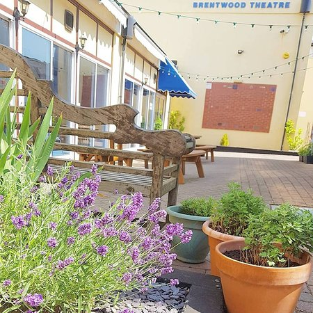 Our wonderful courtyard garden is a great place to have a drink and catch up with friends before a show in the summer.