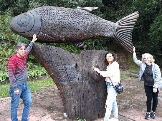 Porto Vitoria, PR: Escultura de madeira
