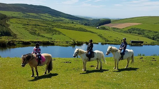 Ballahimmin Riding & Pony Trekking Centre