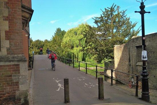 Bicicletas por el puente