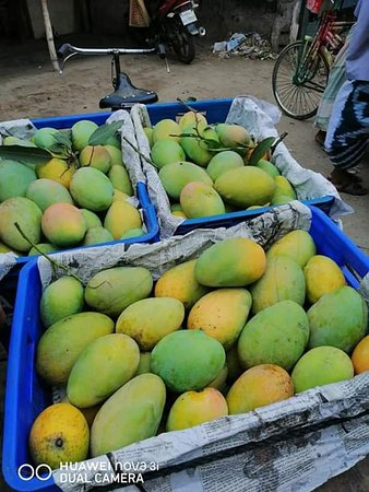 Nawabganj, บังกลาเทศ: Capital city of Mango, Bangladesh