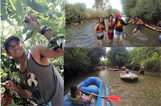 Gadot, Izrael: kayak on the Jordan river