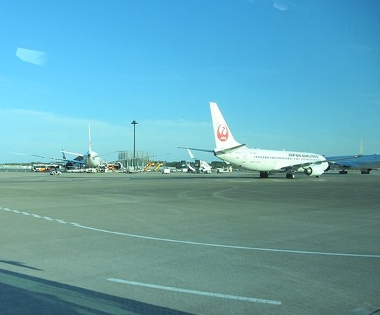Japan Airlines (JAL): Aircraft on the tarmac