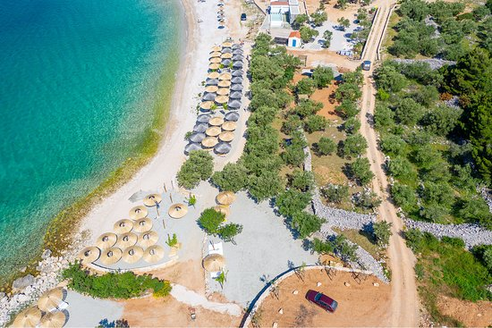 Punat, Croatia: Beach Medane - sun beds in the shadow of olive trees