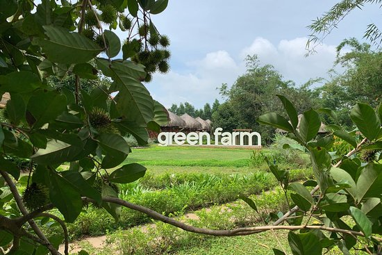 Green Farm - New place in the route of Ba Ria Vung Tau Foto