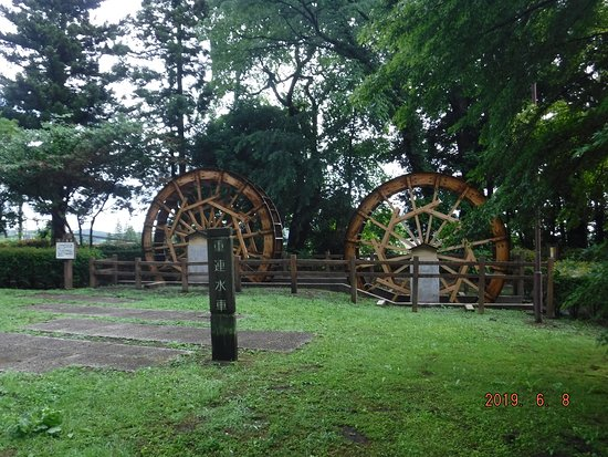 Suginamiki Park