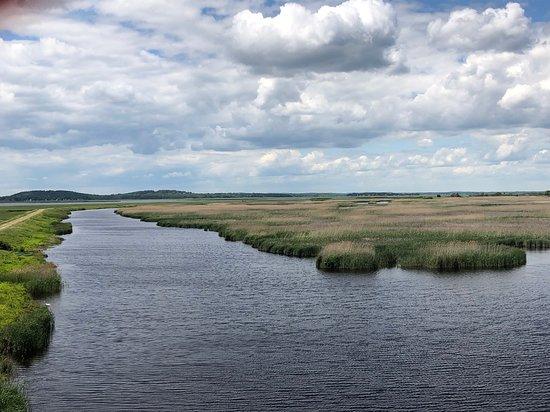 Parker River National Wildlife Refuge Photo