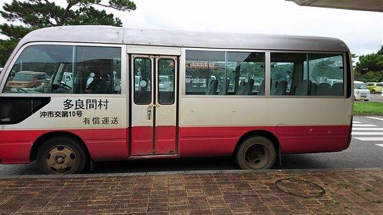 Taramajima Island: 空港と集落を結ぶバス