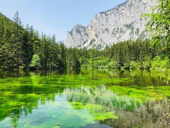 Grüener See